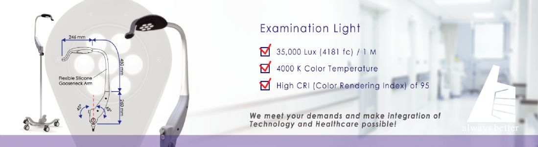 2017 Examination Light